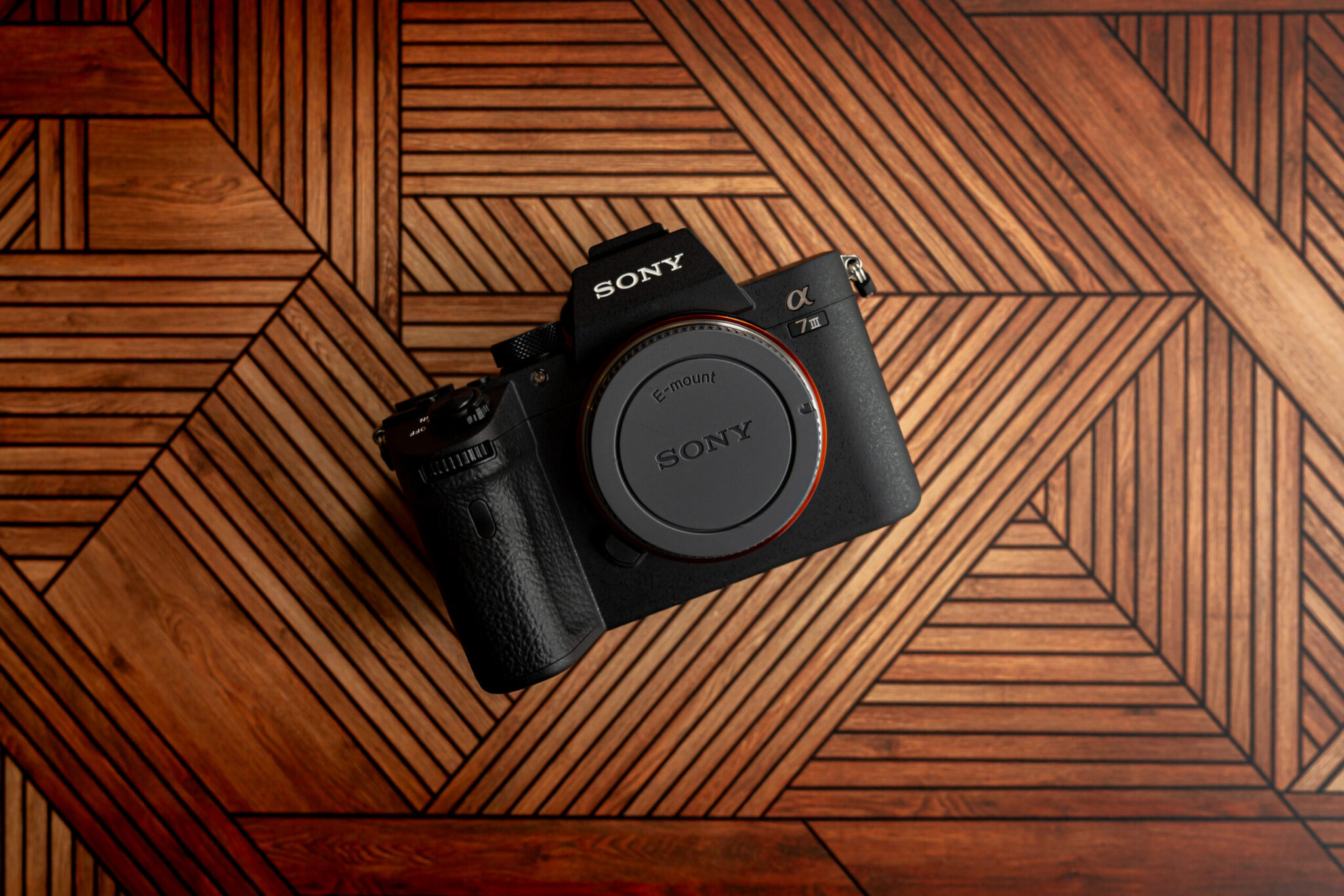 The Sony A7III & why we bought it in 2021